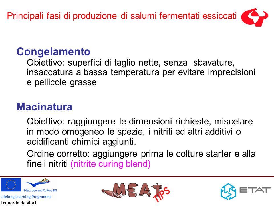Leonardo da Vinci Congelamento Obiettivo: superfici di taglio nette, senza sbavature, insaccatura a bassa temperatura per evitare imprecisioni e pelli
