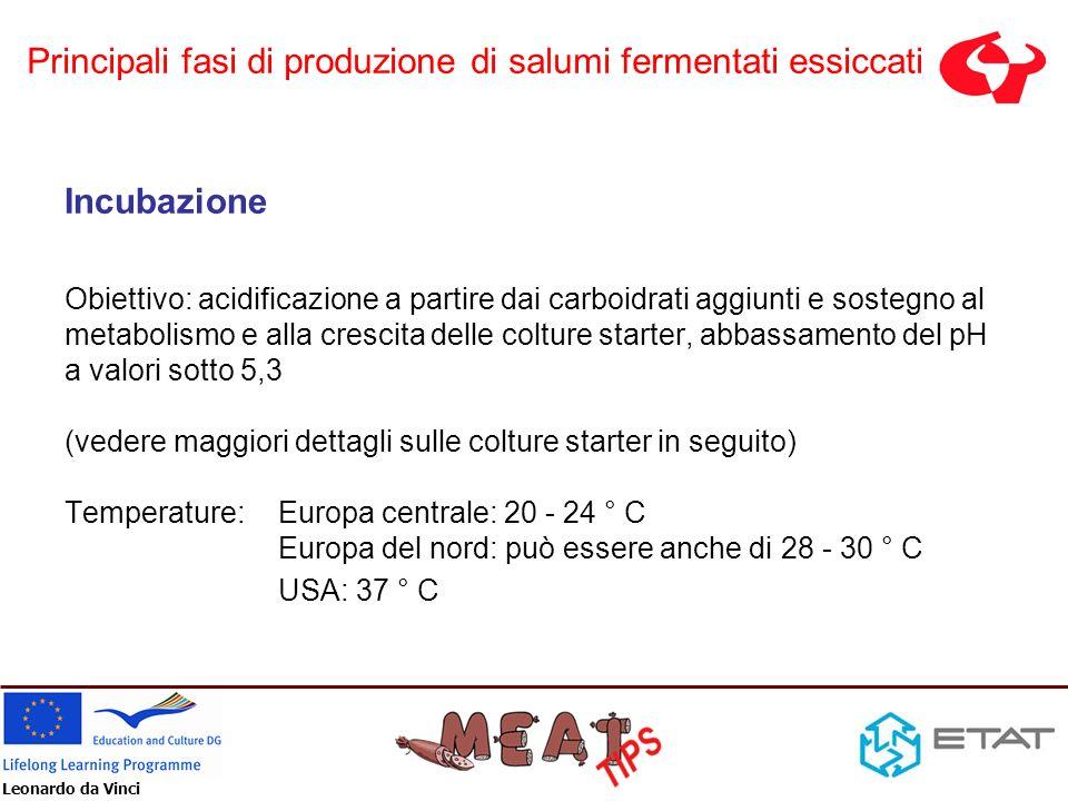 Leonardo da Vinci Incubazione Obiettivo: acidificazione a partire dai carboidrati aggiunti e sostegno al metabolismo e alla crescita delle colture sta