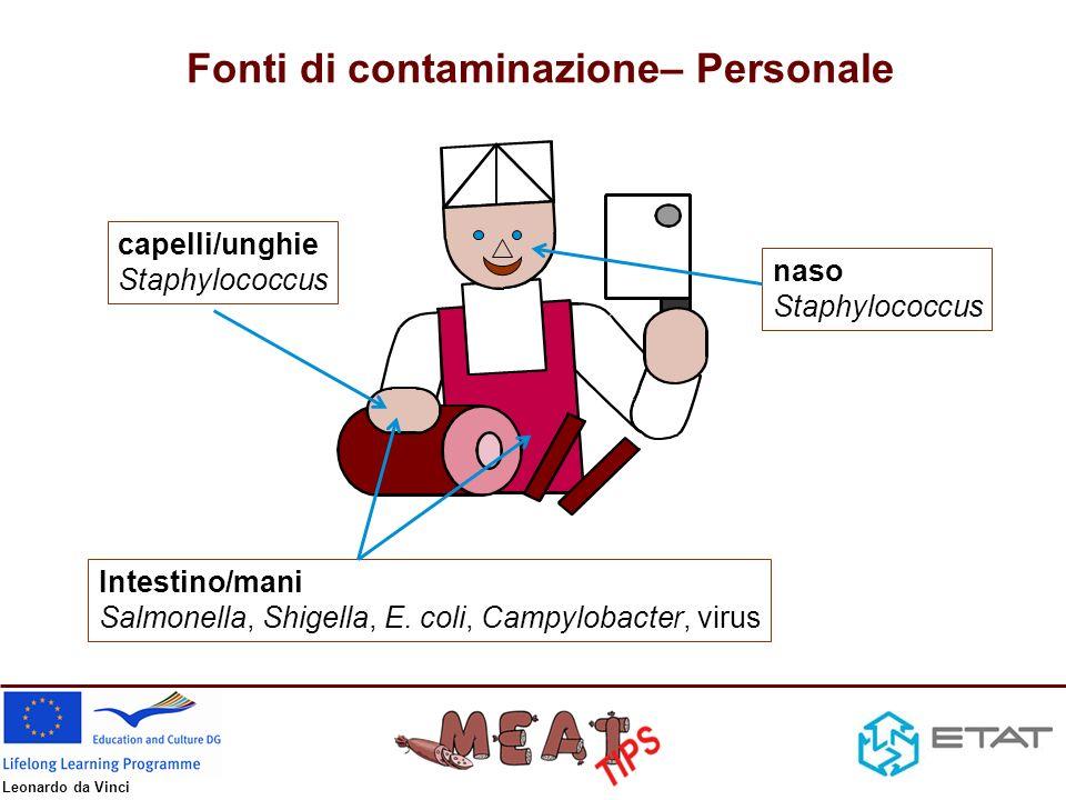 Leonardo da Vinci Fonti di contaminazione – impianti