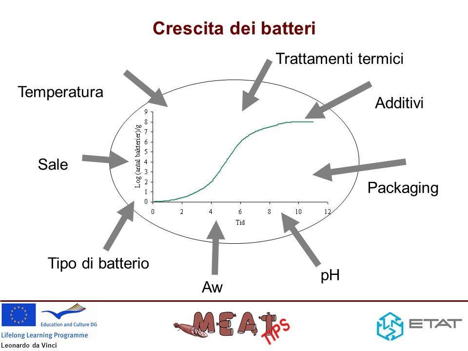 Leonardo da Vinci Altri pericoli legati alle carni Fisici –Vetro –Metallo –Legno –etc Chimici –Metalli pesanti –Diossina –PCBs –Residui di medicinali –Residui di ormoni –etc