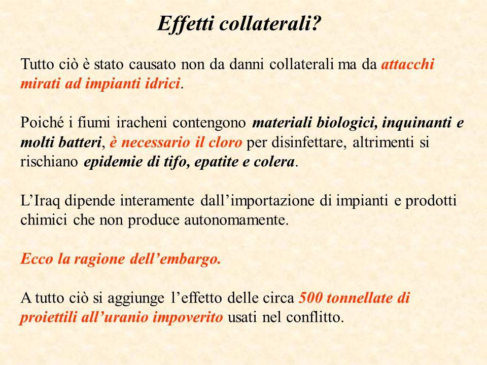 LItalia degli appalti Delle 1300 imprese preselezionate secondo i criteri indicati dallordinanza prima menzionata, 110 sono italiane.