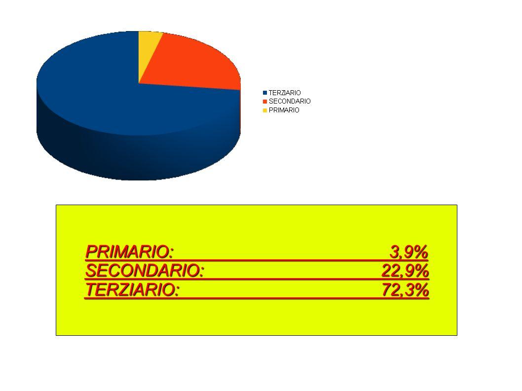 PRIMARIO: 3,9% SECONDARIO: 22,9% TERZIARIO: 72,3%