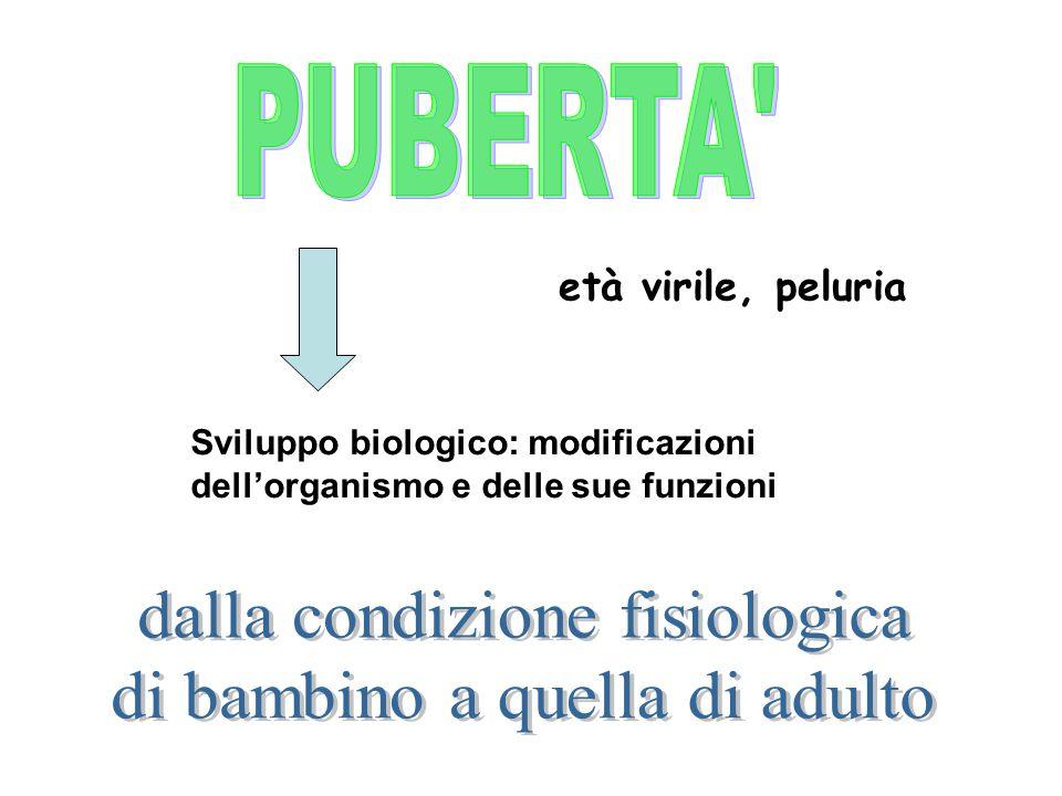 età virile, peluria Sviluppo biologico: modificazioni dellorganismo e delle sue funzioni