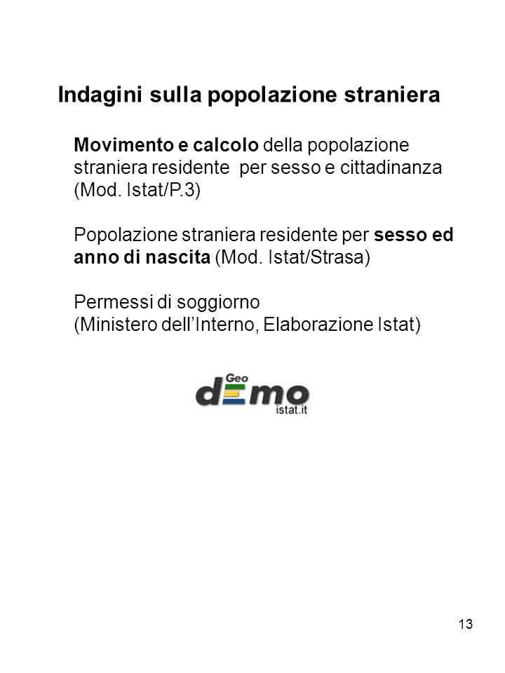 13 Indagini sulla popolazione straniera Movimento e calcolo della popolazione straniera residente per sesso e cittadinanza (Mod. Istat/P.3) Popolazion