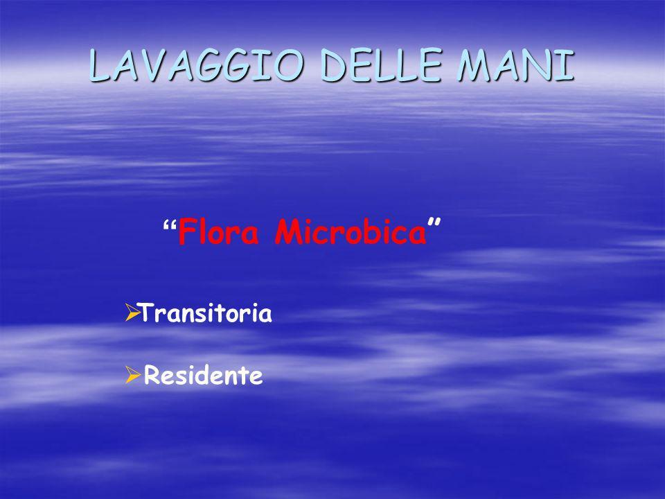 LAVAGGIO DELLE MANI Flora Microbica Transitoria Residente