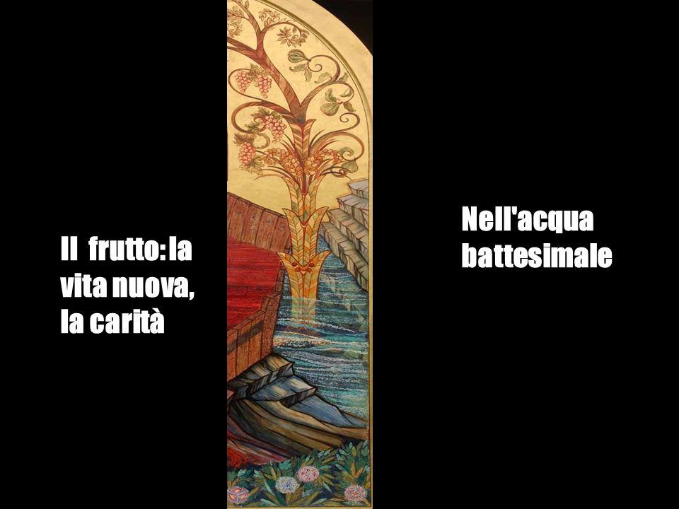 Il frutto: la vita nuova, la carità Nell'acqua battesimale