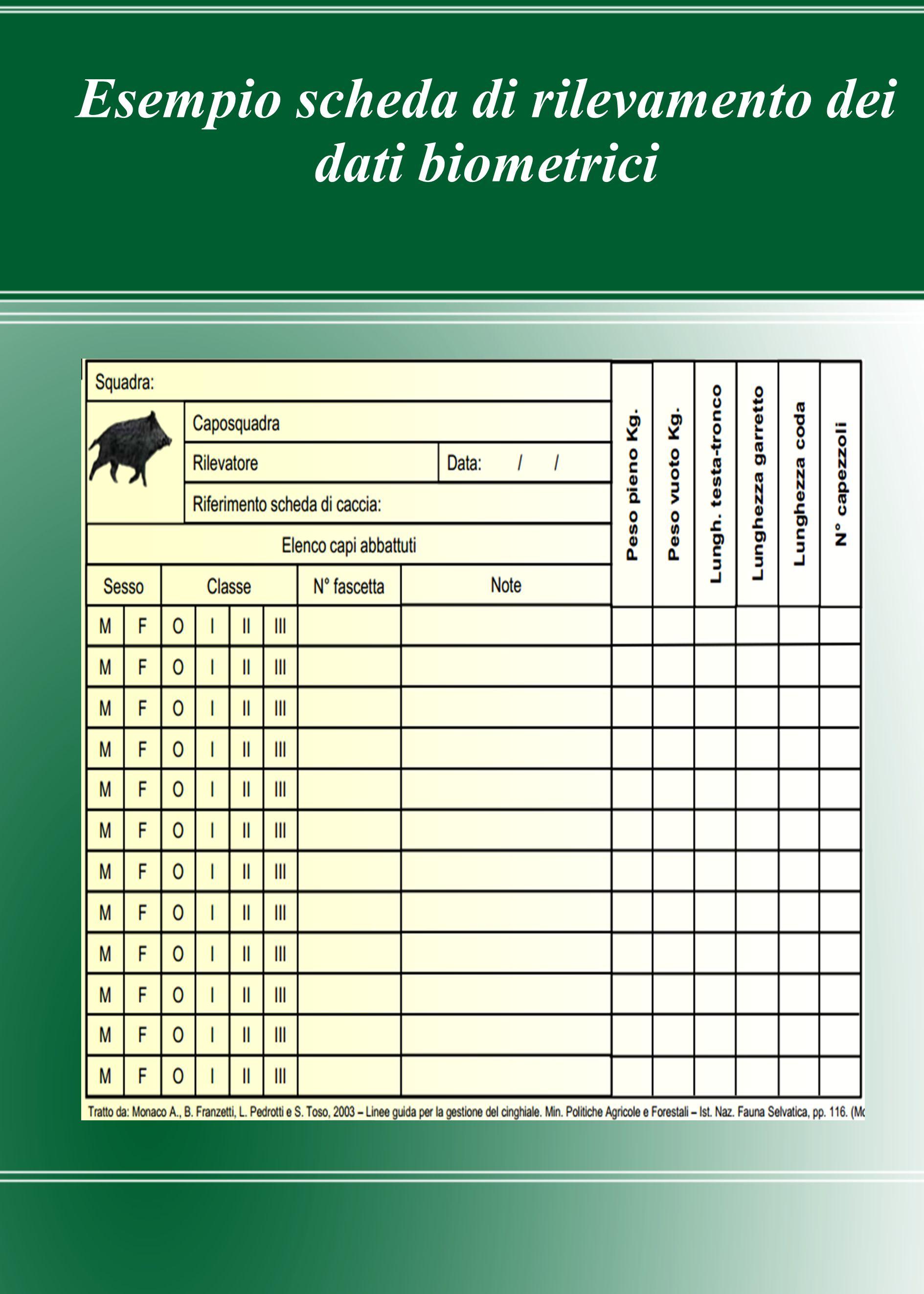 Esempio scheda di rilevamento dei dati biometrici