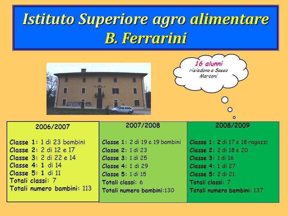 Istituto Superiore agro alimentare B. Ferrarini 2006/2007 Classe 1: 1 di 23 bambini Classe 2: 2 di 12 e 17 Classe 3: 2 di 22 e 14 Classe 4: 1 di 14 Cl