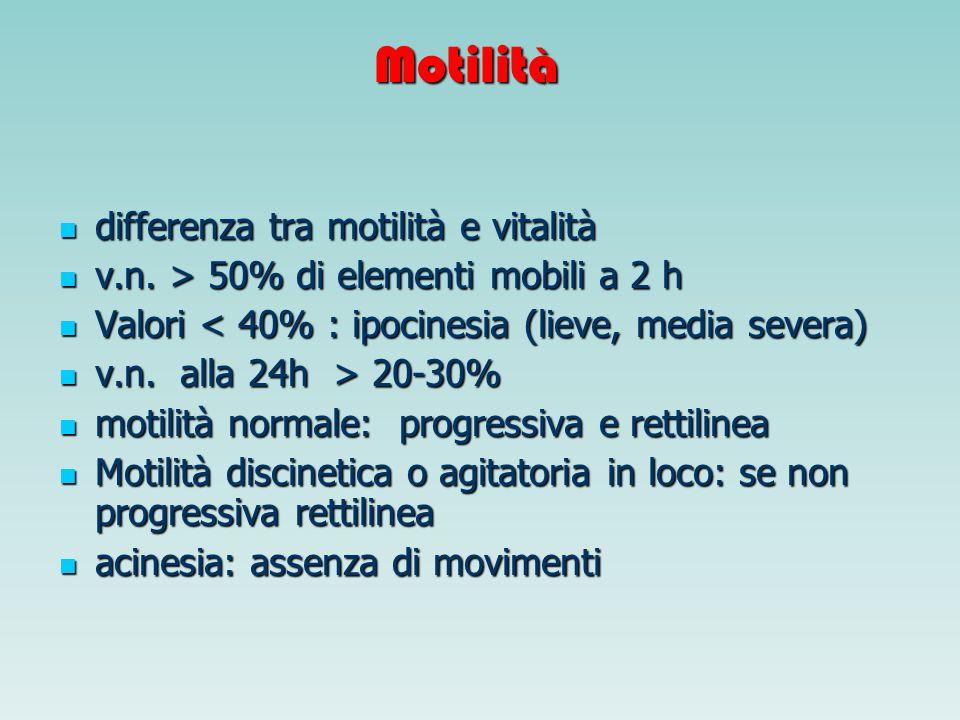 Motilità differenza tra motilità e vitalità differenza tra motilità e vitalità v.n. > 50% di elementi mobili a 2 h v.n. > 50% di elementi mobili a 2 h
