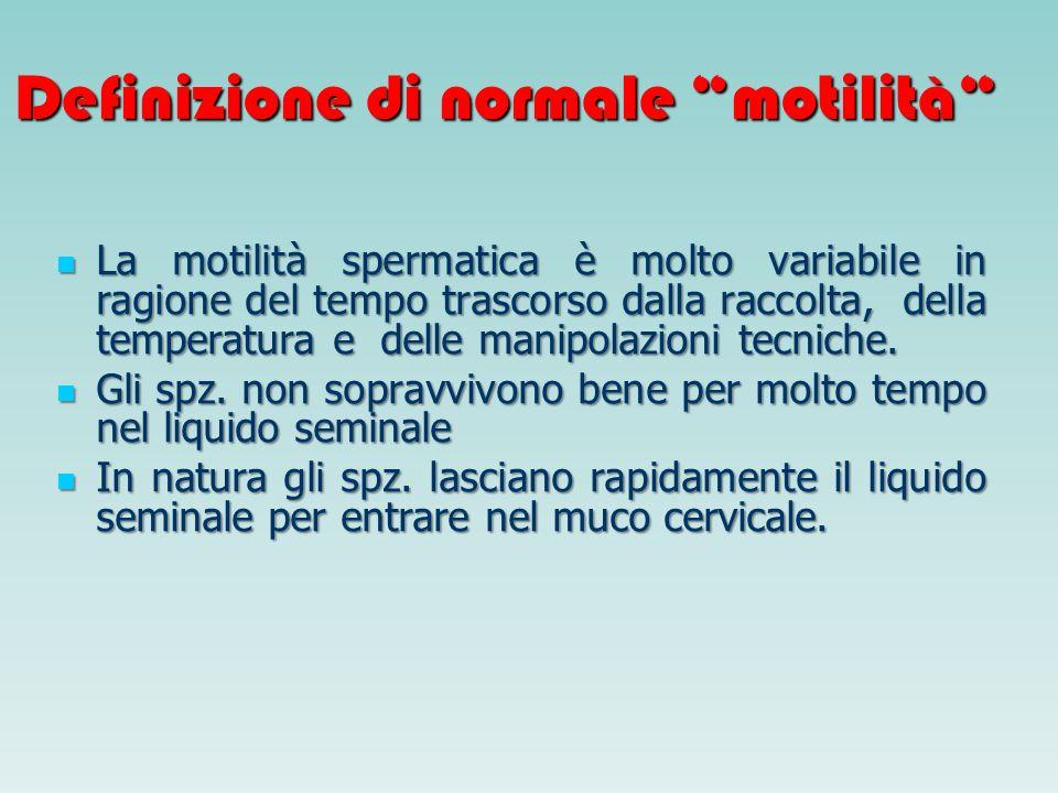 Definizione di normale motilità La motilità spermatica è molto variabile in ragione del tempo trascorso dalla raccolta, della temperatura e delle mani
