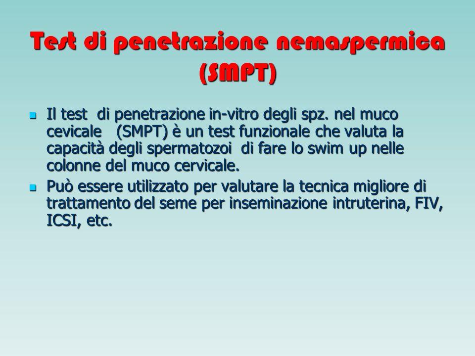 Test di penetrazione nemaspermica (SMPT) Il test di penetrazione in-vitro degli spz. nel muco cevicale (SMPT) è un test funzionale che valuta la capac