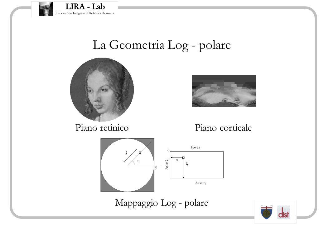 La Geometria Log - polare Piano retinicoPiano corticale Mappaggio Log - polare