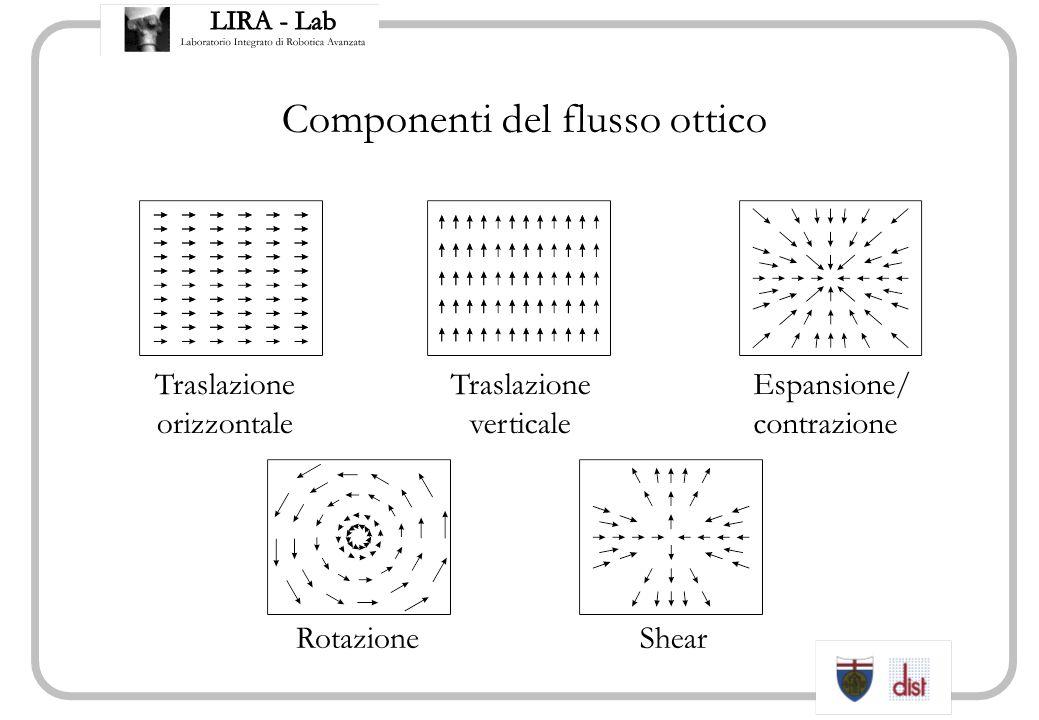 Componenti del flusso ottico Traslazione orizzontale Traslazione verticale Espansione/ contrazione RotazioneShear