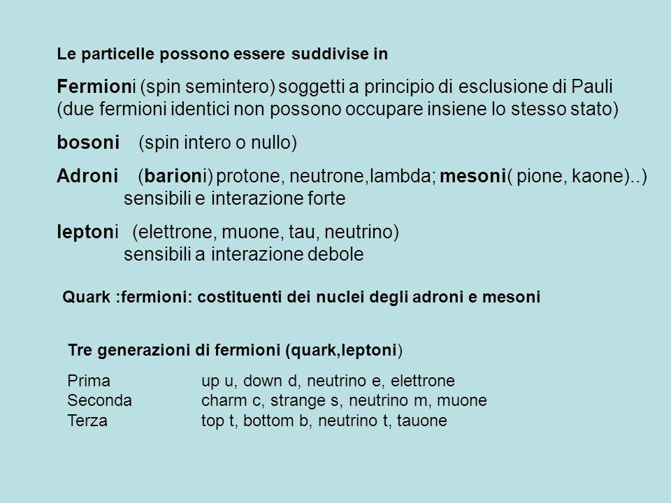 Le particelle possono essere suddivise in Fermioni (spin semintero) soggetti a principio di esclusione di Pauli (due fermioni identici non possono occ