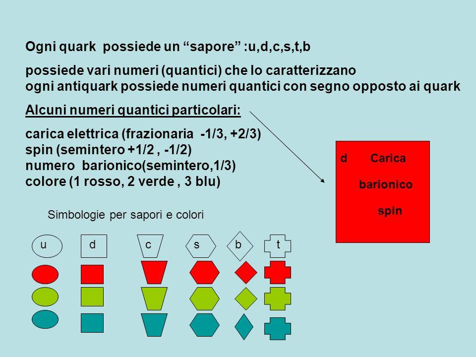 Barioni: numero barionico 1 ( antibarioni -1); spin semintero Mesoni numero barionico 0 (antimesoni 0) ; spin intero Barioni: possiedono tutti tre quark, con tre diversi colori Antibarioni (tre antiquark)
