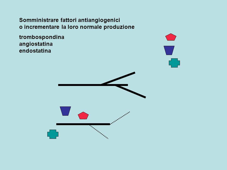 Somministrare fattori antiangiogenici o incrementare la loro normale produzione trombospondina angiostatina endostatina