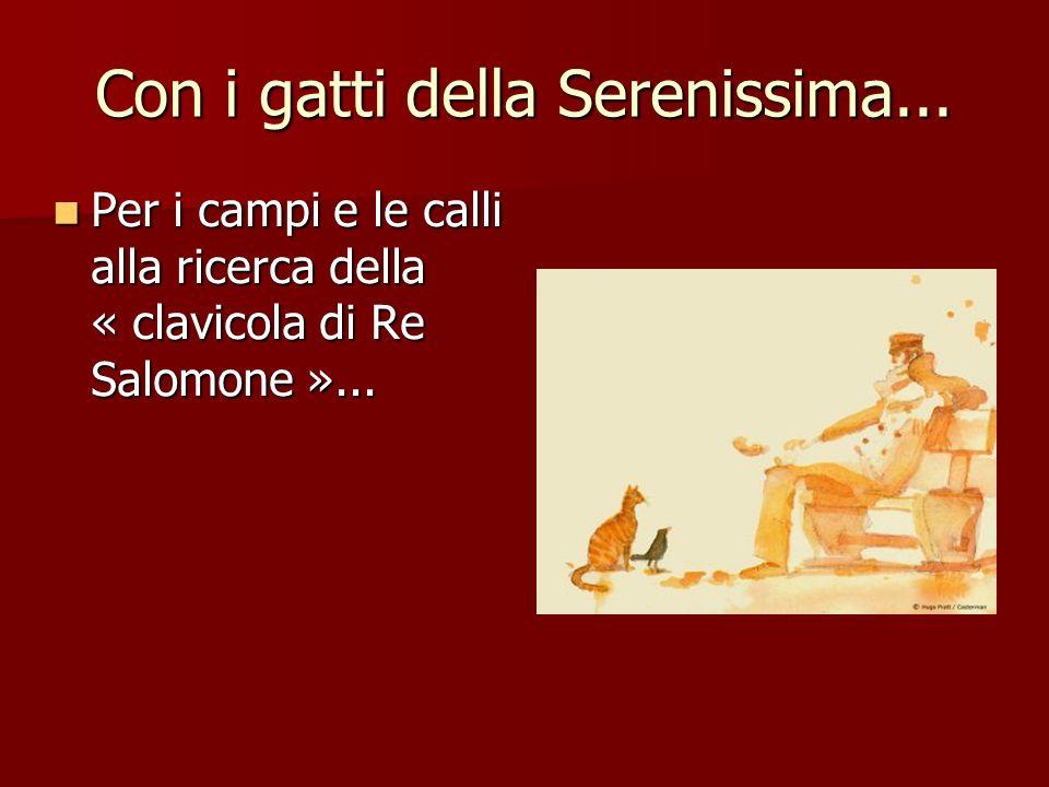 Con i gatti della Serenissima... Per i campi e le calli alla ricerca della « clavicola di Re Salomone »... Per i campi e le calli alla ricerca della «