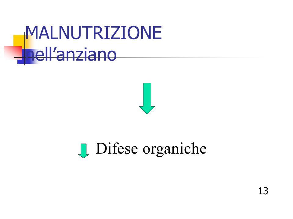 MALNUTRIZIONE nellanziano Difese organiche 13