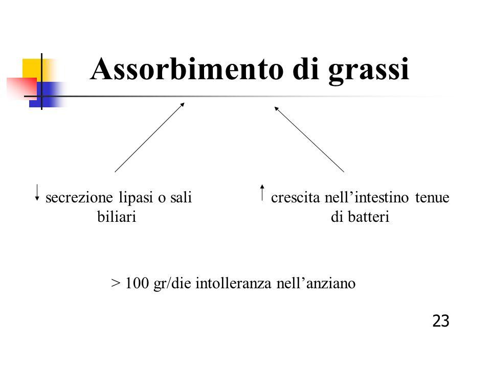 Assorbimento di grassi secrezione lipasi o sali biliari crescita nellintestino tenue di batteri > 100 gr/die intolleranza nellanziano 23