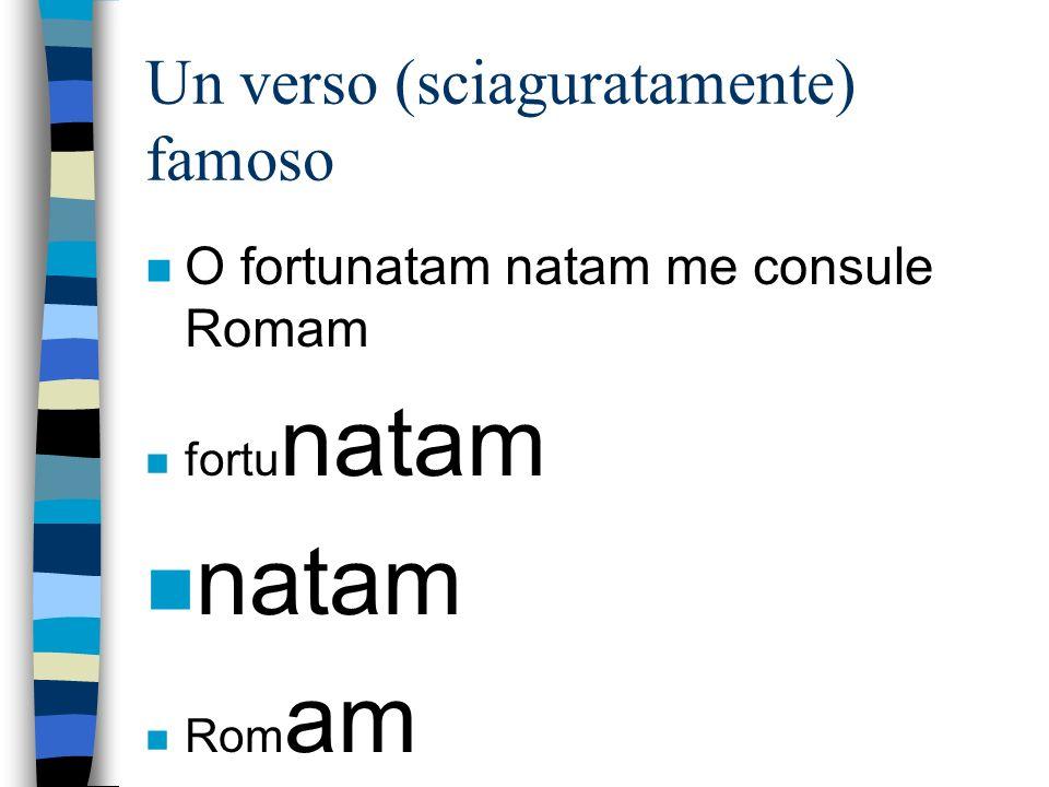 Un verso (sciaguratamente) famoso nOnO fortunatam natam me consule Romam nfnfortu natam natam nRnRom am
