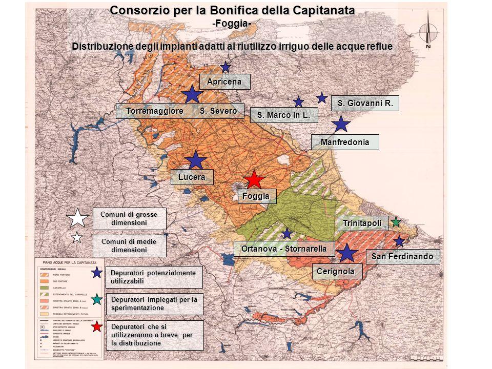 Foggia Trinitapoli San Ferdinando Cerignola Ortanova - Stornarella S. Giovanni R. S. Marco in L. Manfredonia Lucera S. Severo Torremaggiore Apricena D