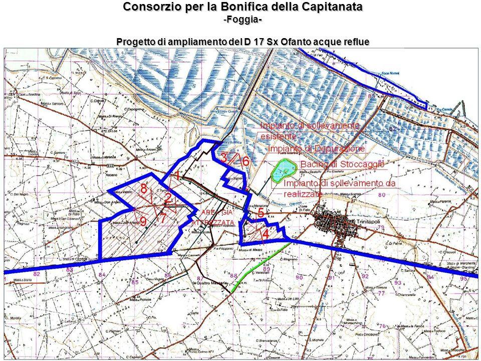 Consorzio per la Bonifica della Capitanata -Foggia- Progetto di ampliamento del D 17 Sx Ofanto acque reflue
