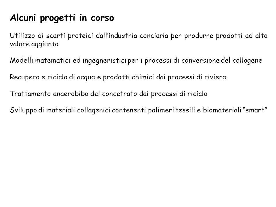 Alcuni progetti in corso Utilizzo di scarti proteici dallindustria conciaria per produrre prodotti ad alto valore aggiunto Modelli matematici ed ingeg