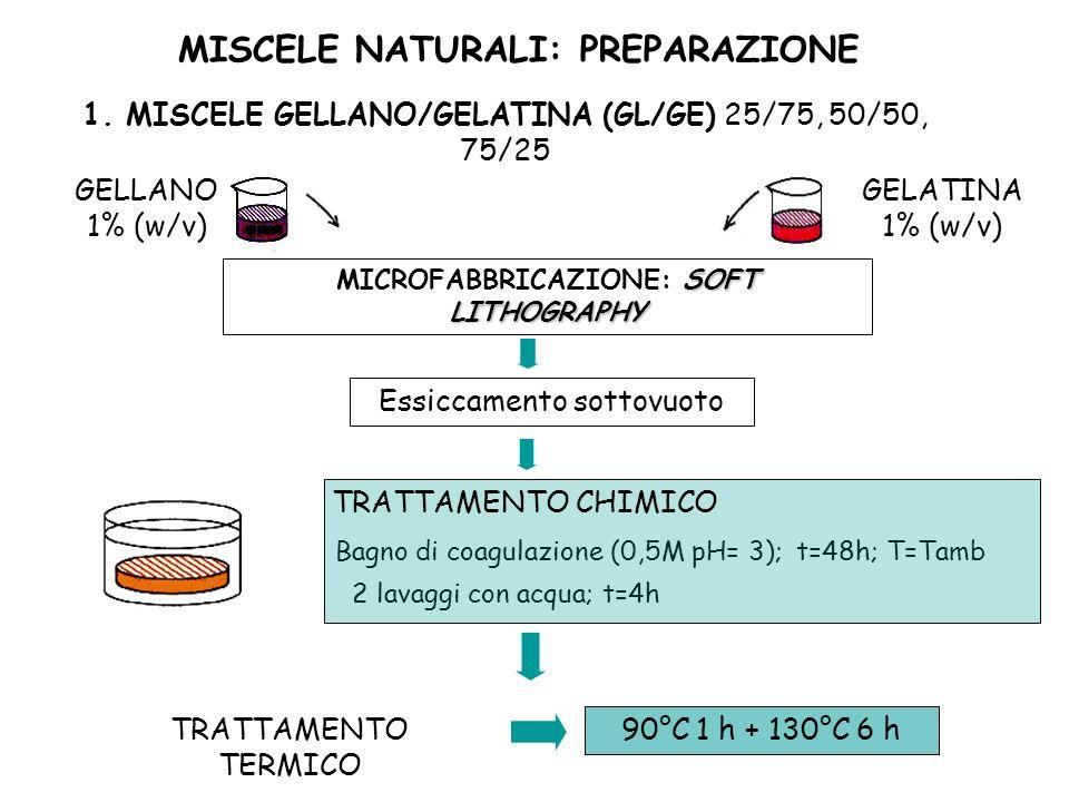MISCELE NATURALI: PREPARAZIONE GELLANO 1% (w/v) GELATINA 1% (w/v) 1. MISCELE GELLANO/GELATINA (GL/GE) 25/75, 50/50, 75/25 Bagno di coagulazione (0,5M