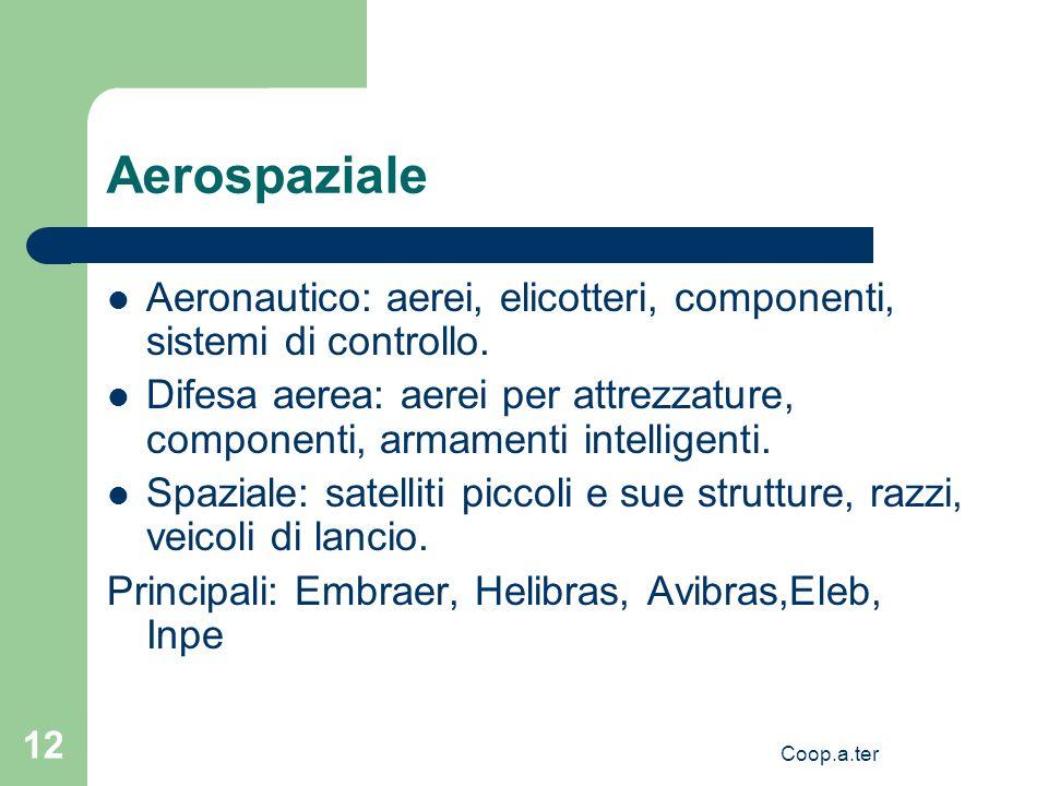 Coop.a.ter 12 Aerospaziale Aeronautico: aerei, elicotteri, componenti, sistemi di controllo. Difesa aerea: aerei per attrezzature, componenti, armamen