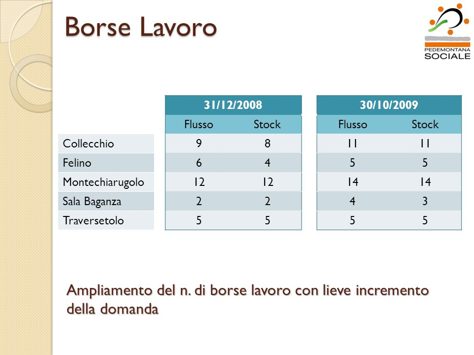 Borse Lavoro 31/12/200830/10/2009 FlussoStockFlussoStock Collecchio9811 Felino6455 Montechiarugolo12 14 Sala Baganza2243 Traversetolo5555 Ampliamento