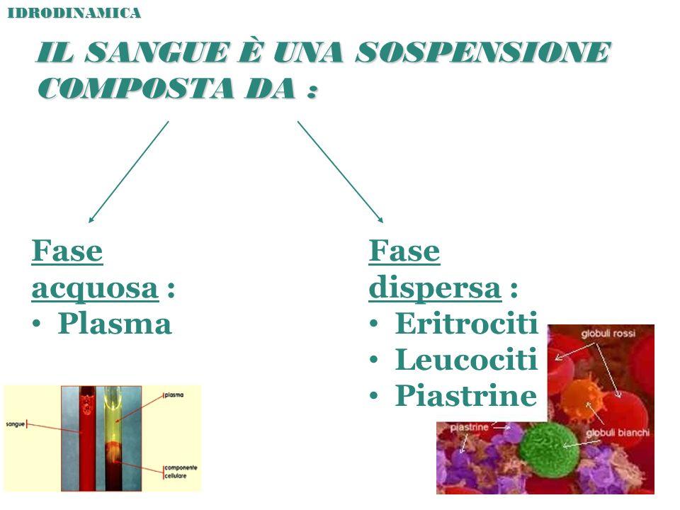 IL SANGUE È UNA SOSPENSIONE COMPOSTA DA : Fase acquosa : Plasma Fase dispersa : Eritrociti Leucociti PiastrineIDRODINAMICA