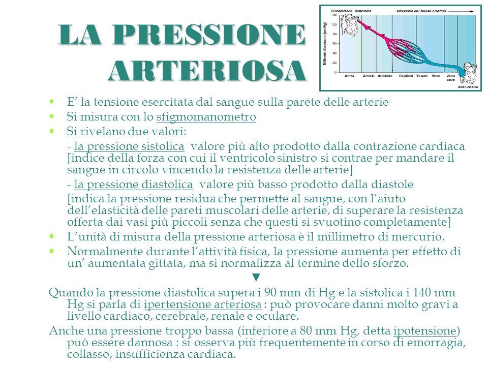 LA PRESSIONE ARTERIOSA E la tensione esercitata dal sangue sulla parete delle arterie Si misura con lo sfigmomanometro Si rivelano due valori: - la pressione sistolica valore più alto prodotto dalla contrazione cardiaca [indice della forza con cui il ventricolo sinistro si contrae per mandare il sangue in circolo vincendo la resistenza delle arterie] - la pressione diastolica valore più basso prodotto dalla diastole [indica la pressione residua che permette al sangue, con laiuto dellelasticità delle pareti muscolari delle arterie, di superare la resistenza offerta dai vasi più piccoli senza che questi si svuotino completamente] Lunità di misura della pressione arteriosa è il millimetro di mercurio.