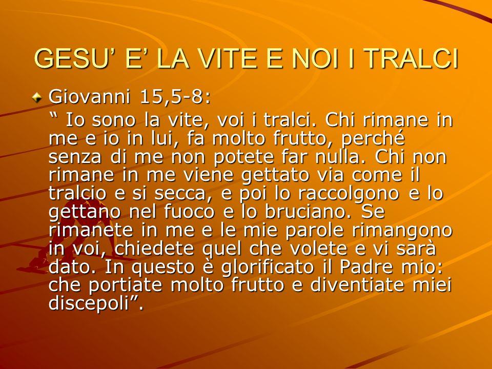 GESU E LA VITE E NOI I TRALCI Giovanni 15,5-8: Io sono la vite, voi i tralci. Chi rimane in me e io in lui, fa molto frutto, perché senza di me non po