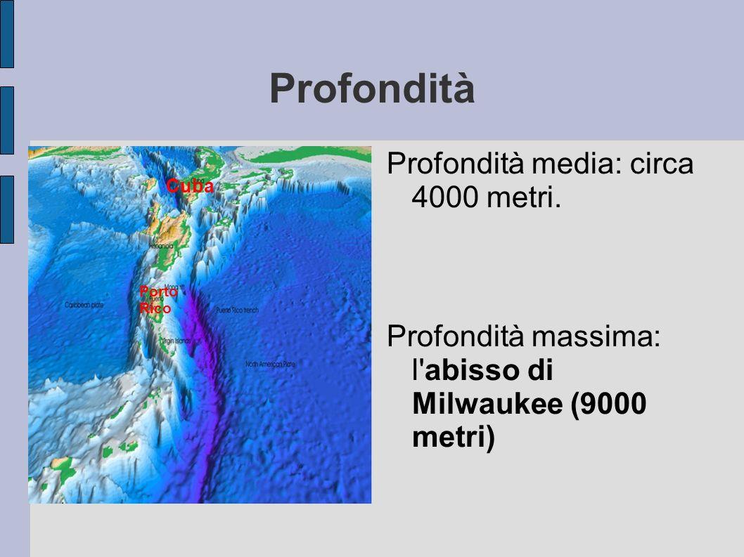 Profondità Profondità media: circa 4000 metri. Profondità massima: l'abisso di Milwaukee (9000 metri) Cuba Porto Rico