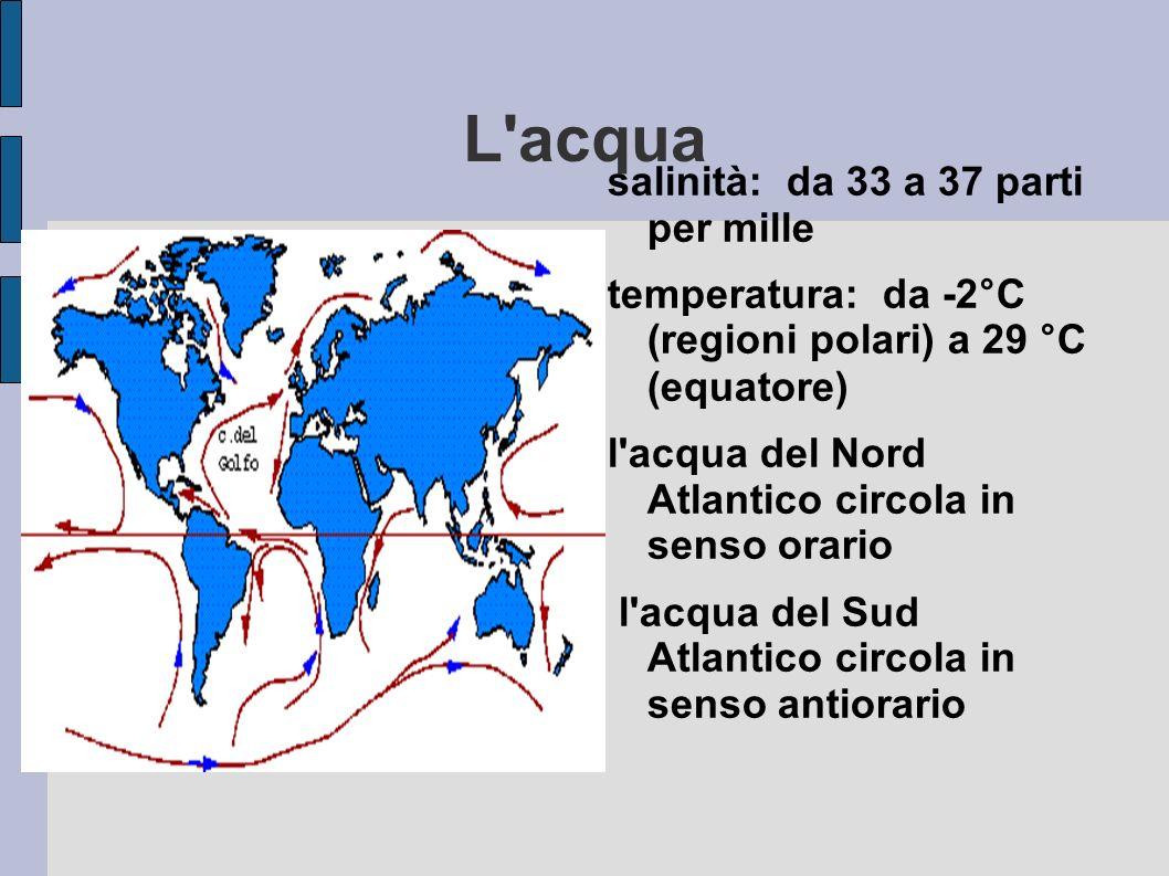 L'acqua salinità: da 33 a 37 parti per mille temperatura: da -2°C (regioni polari) a 29 °C (equatore) l'acqua del Nord Atlantico circola in senso orar