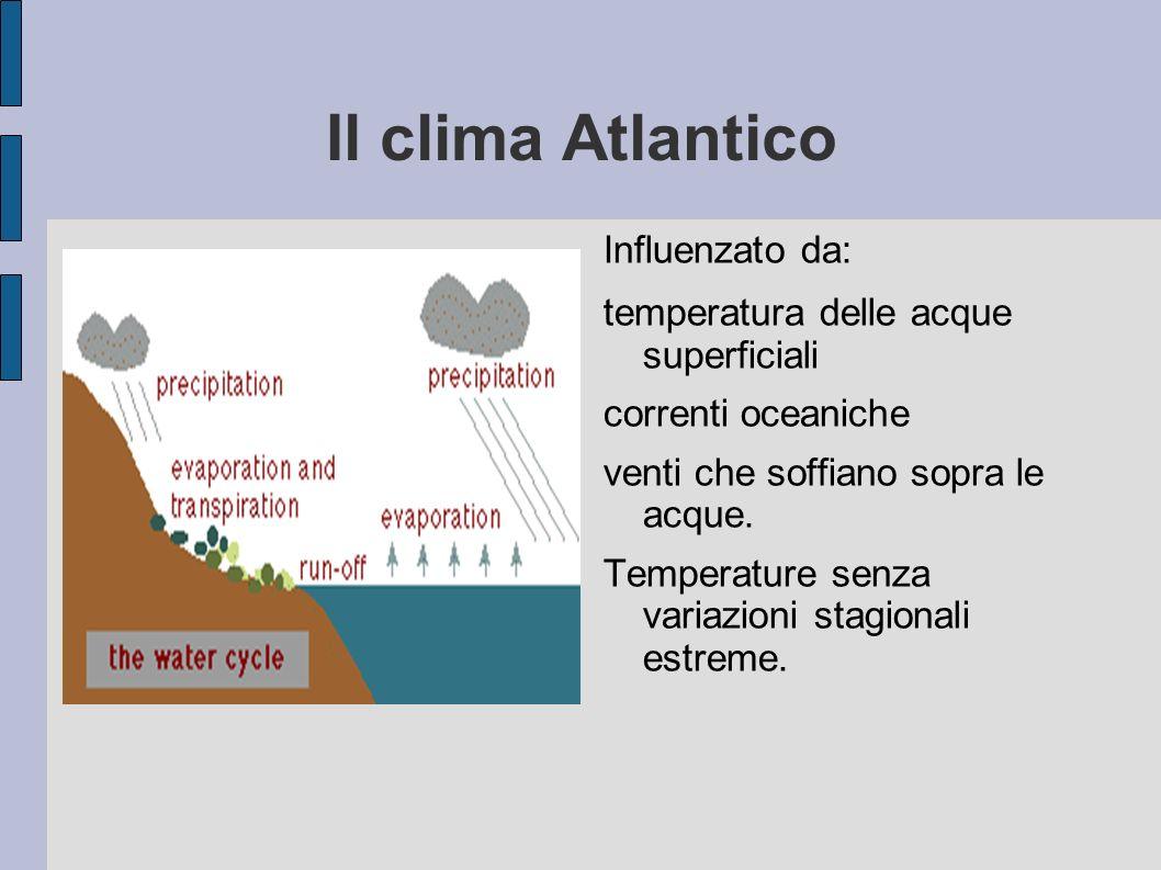 Il clima Atlantico Influenzato da: temperatura delle acque superficiali correnti oceaniche venti che soffiano sopra le acque. Temperature senza variaz