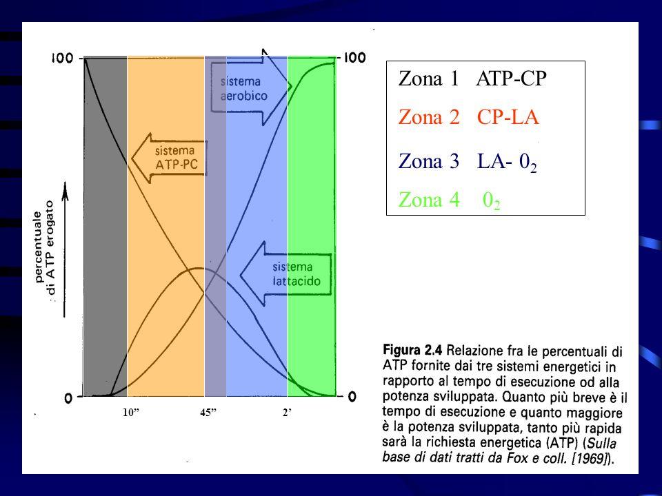 Zona 1 ATP-CP Zona 2 CP-LA Zona 3 LA- 0 2 Zona 4 0 2 10 45 2