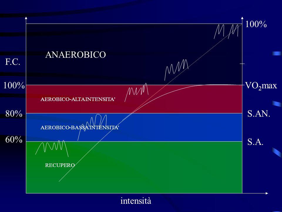 VO 2 max S.AN. S.A. 100% 80% 60% F.C. AEROBICO-ALTA INTENSITA AEROBICO-BASSA INTENSITA RECUPERO ANAEROBICO intensità 100%