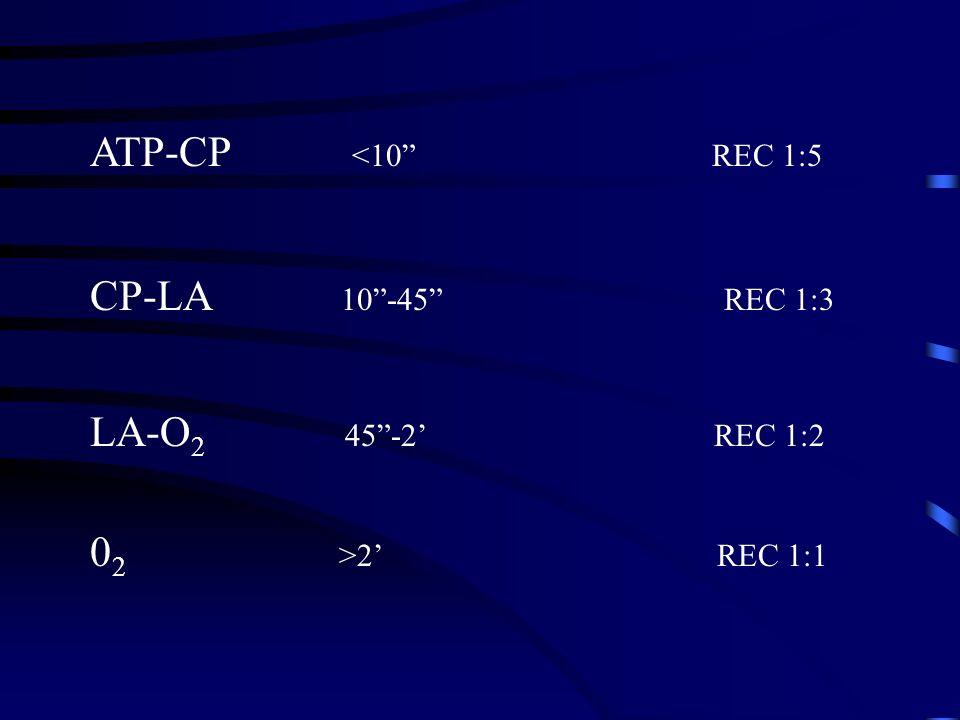 ATP-CP <10 REC 1:5 CP-LA 10-45 REC 1:3 LA-O 2 45-2 REC 1:2 0 2 >2 REC 1:1