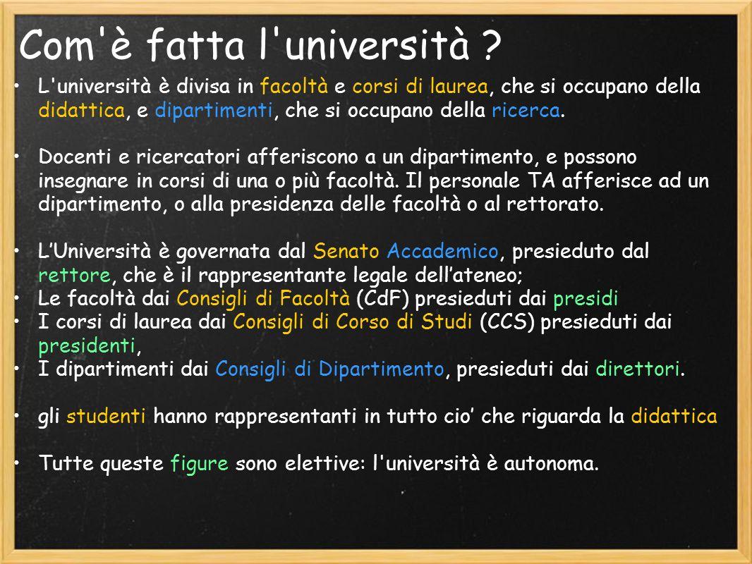 TASSE E BORSE DI STUDIO Dati OCSE 2008