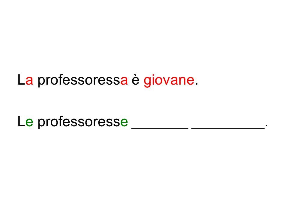 La professoressa è giovane. Le professoresse _______ _________.