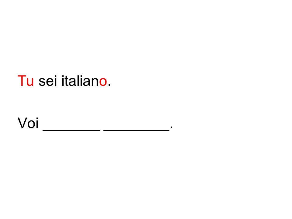 Tu sei italiano. Voi _______ ________.