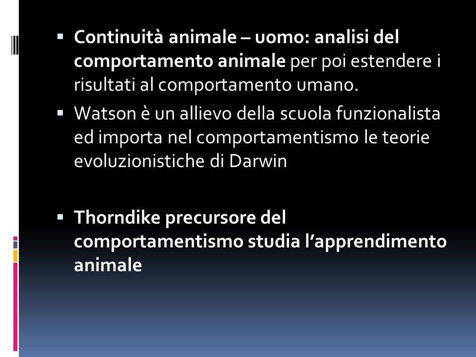 Continuità animale – uomo: analisi del comportamento animale per poi estendere i risultati al comportamento umano.