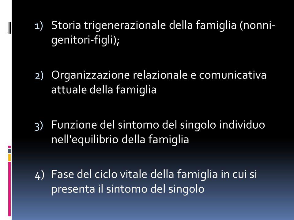 1) Storia trigenerazionale della famiglia (nonni- genitori-figli); 2) Organizzazione relazionale e comunicativa attuale della famiglia 3) Funzione del sintomo del singolo individuo nell equilibrio della famiglia 4) Fase del ciclo vitale della famiglia in cui si presenta il sintomo del singolo