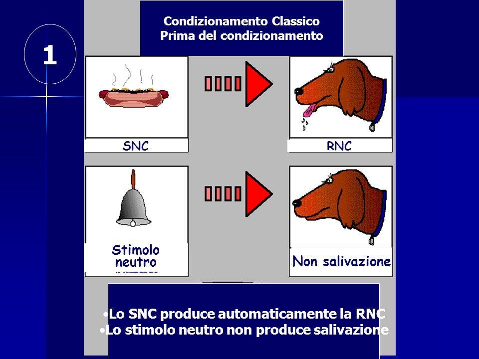 Condizionamento Classico Prima del condizionamento SNCRNC Stimolo neutro Non salivazione 1 Lo SNC produce automaticamente la RNC Lo stimolo neutro non