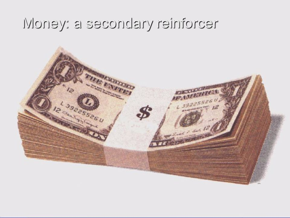 Money: a secondary reinforcer