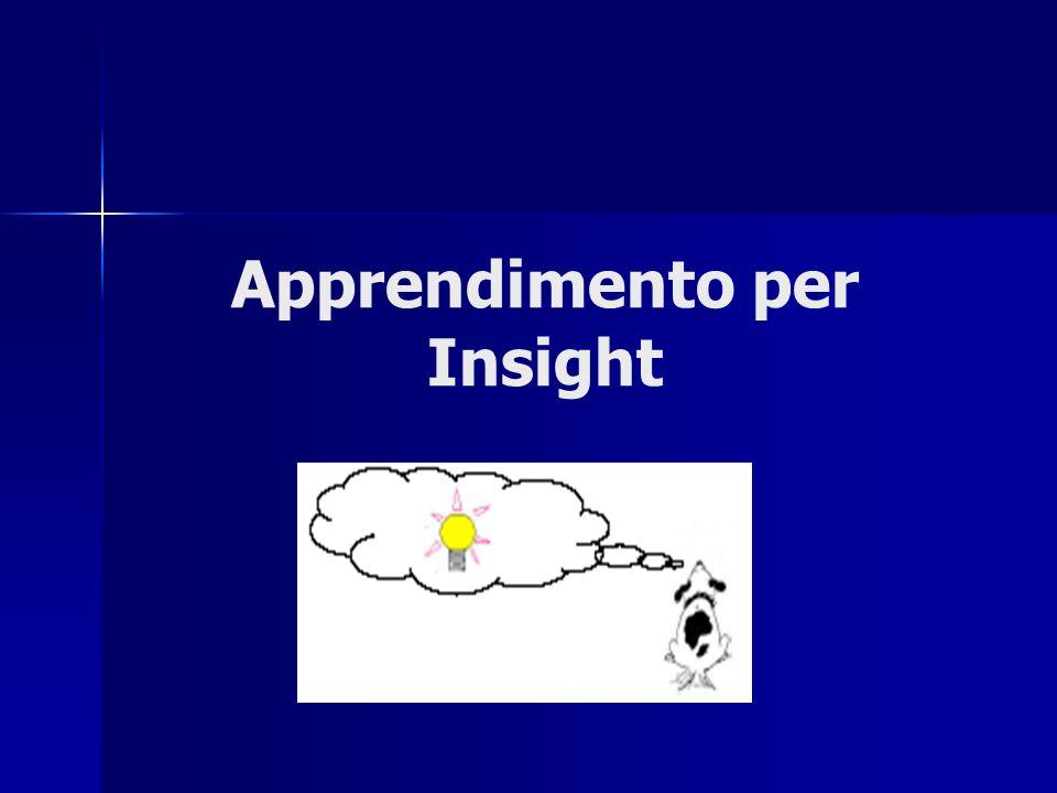 Apprendimento per Insight