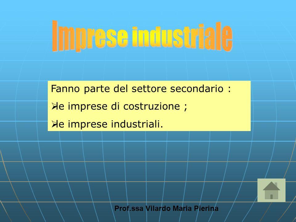 Prof.ssa Vilardo Maria Pierina Fanno parte del settore secondario : le imprese di costruzione ; le imprese industriali.