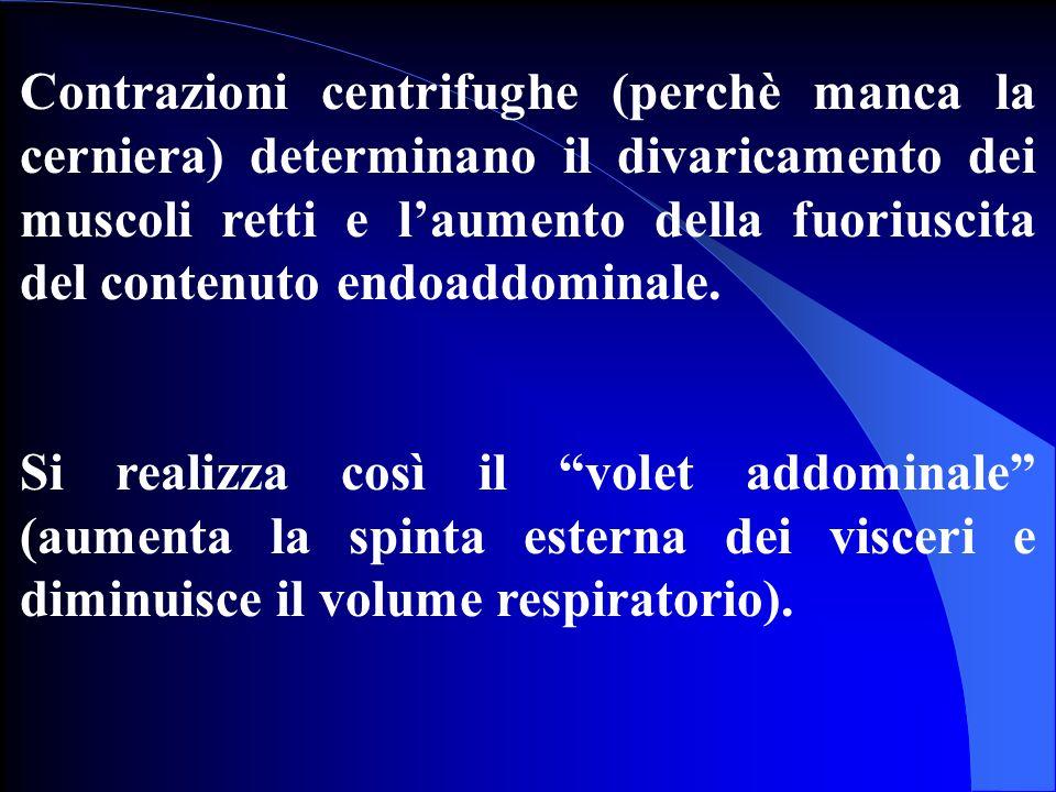 Contrazioni centrifughe (perchè manca la cerniera) determinano il divaricamento dei muscoli retti e laumento della fuoriuscita del contenuto endoaddom