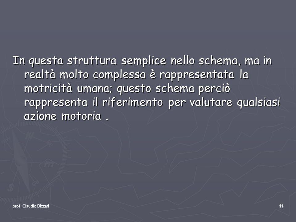 prof. Claudio Bizzari11 In questa struttura semplice nello schema, ma in realtà molto complessa è rappresentata la motricità umana; questo schema perc